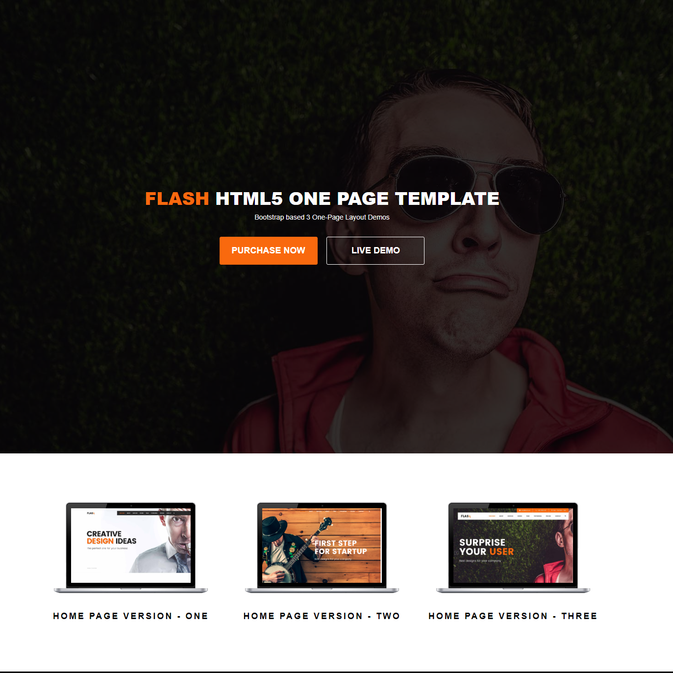 Free Download Bootstrap Flash Themes
