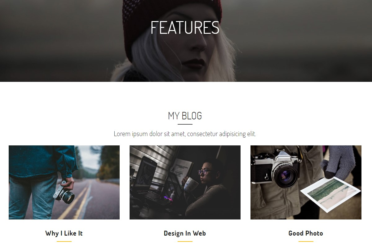 Bootstrap HTML Themes